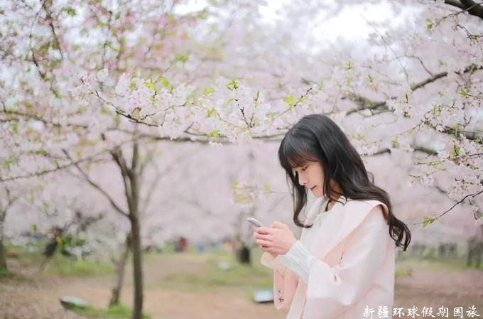 杏花沟小姐姐