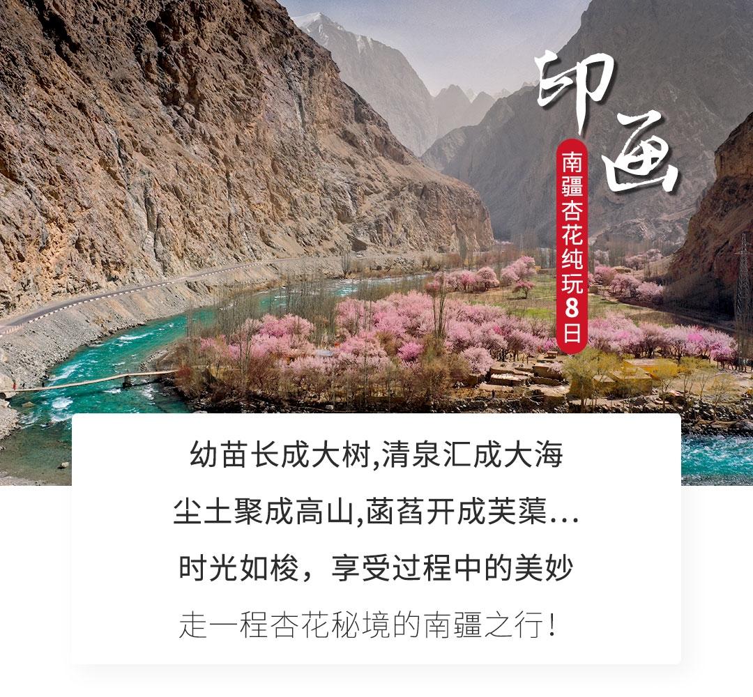B1-南疆杏花8日_01